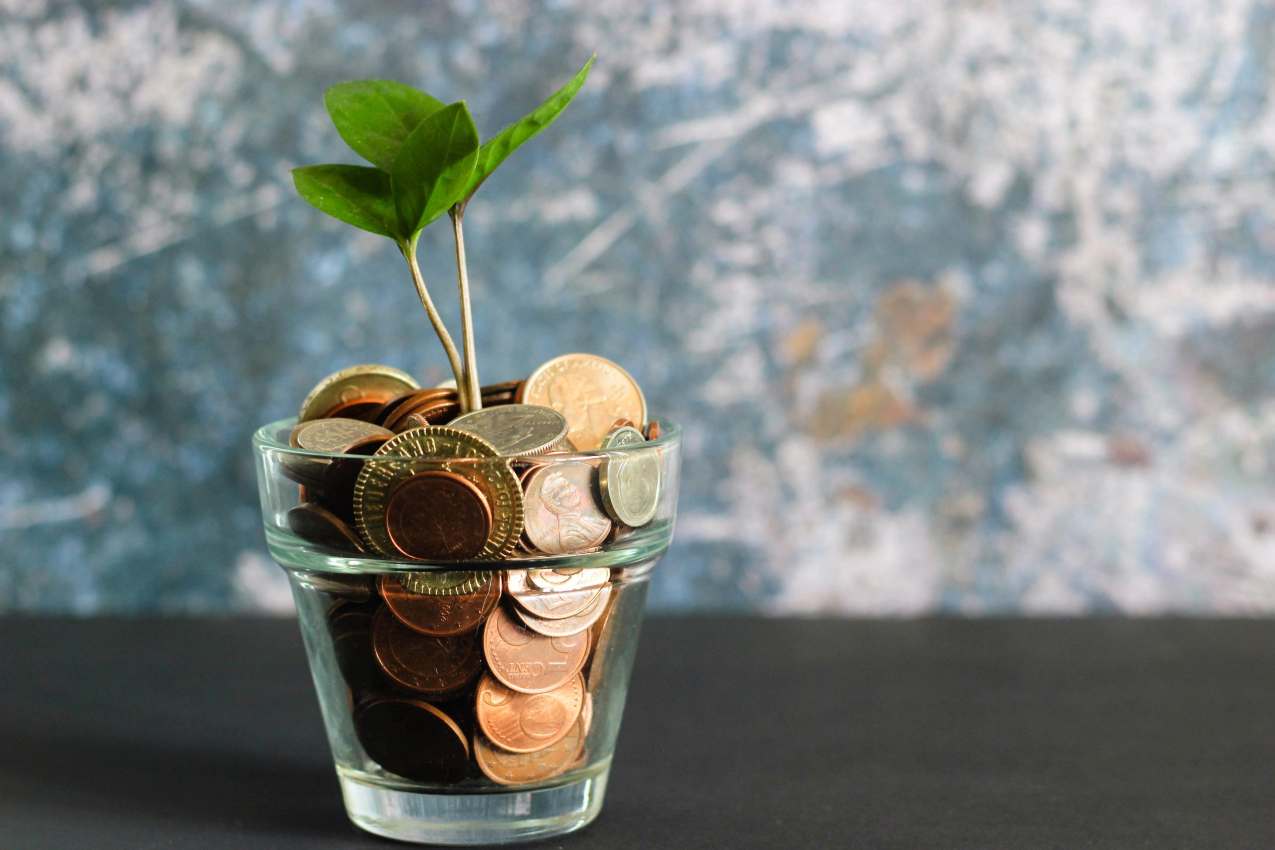 A cup in the table filled with coins and a plant growing from it